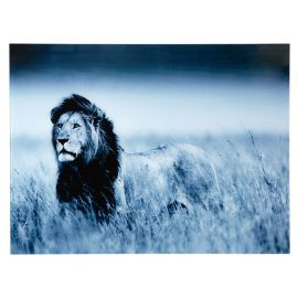 Tablou Lion King 60x80cm Lowe