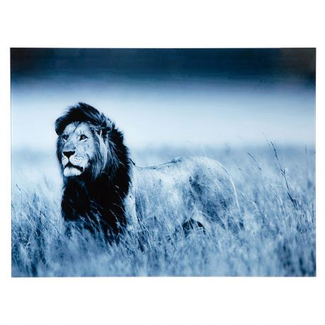 Tablou Lion King 60x80cm Lowe - Evambient VC - Tablouri
