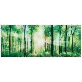 Tablou Forrest 40x100cm Wald