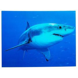 Tablou Shark 60x80cm
