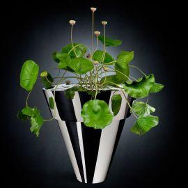 Aranjament floral, NELUMBO DANCE 200cm - Evambient VG - Aranjamente florale LUX