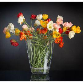 Aranjament floral LUX din maci multicolori TROP