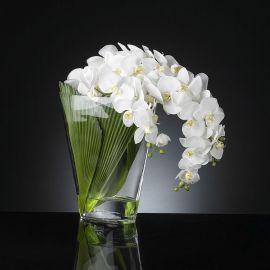 Aranjament floral PHALENO CASCADE - Evambient VG - Aranjamente florale LUX