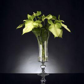 Aranjament floral ANTHURIUM - Evambient VG - Aranjamente florale LUX