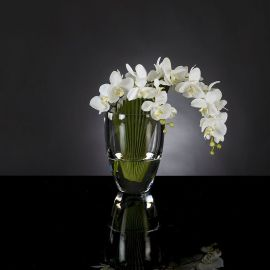 Aranjament floral PALMA PHALENOPSIS