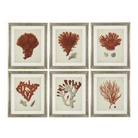 Set de 6 tablouri Antique red corals