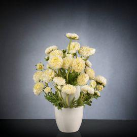 Aranjament floral BABILON RANUNCOLO Small 50cm, alb