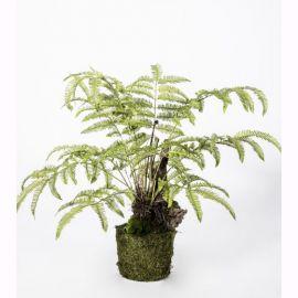 Aranjament floral I/POT FERN GREEN 90cm - Silk-ka - Aranjamente florale LUX