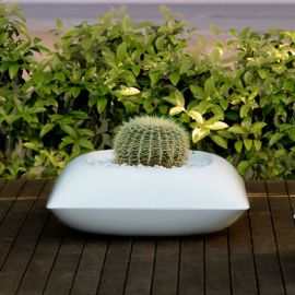 GHIVECI PILLOW PLANTER