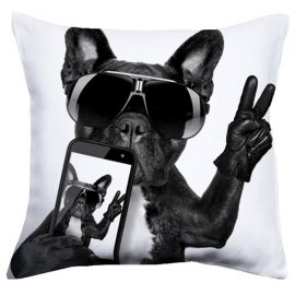 Perna Cool Dog 40x40