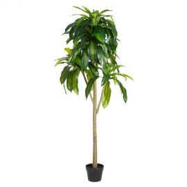 Planta artificiala decorativa pentru exterior DRACENA VERDE 158cm - Evambient SX - Obiecte decorative