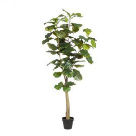 Planta artificiala decorativa pentru exterior FICUS VERDE 158cm - Evambient SX - Obiecte decorative