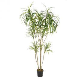 Planta artificiala decorativa pentru exterior DRACENA VERDE 197cm - Evambient SX - Obiecte decorative