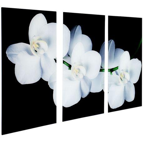 Tablou 3 Orchidee 60x30cm