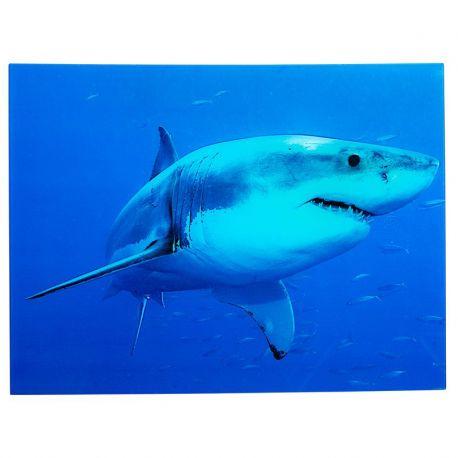 Tablouri - Tablou Shark 60x80cm