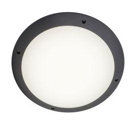Plafoniere - Plafoniera LED exterior cu telecomanda Medway antracit