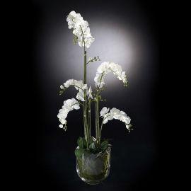 Aranjamente florale LUX - Aranjament floral PLANT NEW PHALENOPSIS, 135cm