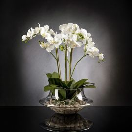 Aranjamente florale LUX - Aranjament floral LIGHT ATOLLO 3 PHALENOPSIS BIG