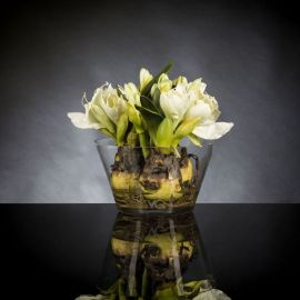 Aranjamente florale LUX - Aranjament floral VASE MASSY BULB