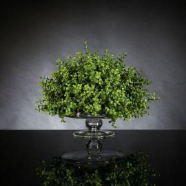 Aranjamente florale LUX - Aranjament floral ALZATA EUCALYPTUS