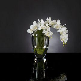 Aranjamente florale LUX - Aranjament floral PALMA PHALENOPSIS
