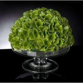 Aranjamente florale LUX - Aranjament floral STAND MOLUCELLA