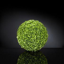 Aranjamente florale LUX - Aranjament floral SPHERE MOLUCELLA BIG