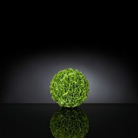 Aranjamente florale LUX - Aranjament floral SPHERE MOLUCELLA SMALL