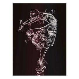 Tablouri - Tablou Bailarina, 80x120cm