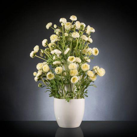Aranjamente florale LUX - Aranjament floral BABILON RANUNCOLO BIG 95cm, alb