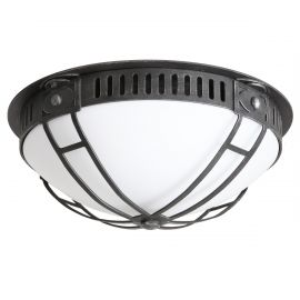 Aplice Exterior Fier Forjat - Plafoniera iluminat exterior din fier forjat, DE 2578-A