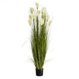 Obiecte decorative - Planta artificiala decorativa pentru exterior Spite albe 176cm