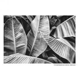 Tablouri - Tablou decorativ IMPRESIÓN, 120x80cm