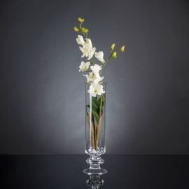 Aranjament floral elegant, design LUX ETERNITY DENDROBIUM ORCHID PLANT