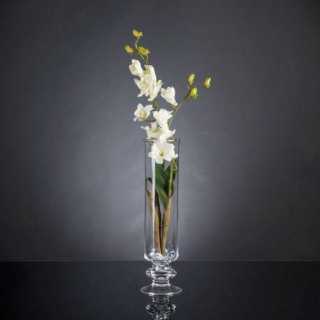 Aranjamente florale LUX - Aranjament floral elegant, design LUX ETERNITY DENDROBIUM ORCHID PLANT