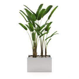 Ghivece - Ghiveci, Suport flori design LUX Stela, 85x50cm