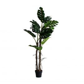 Aranjamente florale LUX - Planta artificiala decorativa Split Philo, 180cm