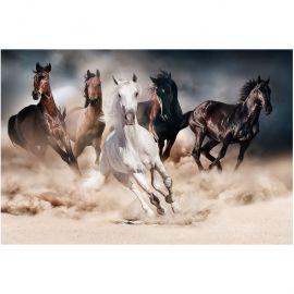Tablouri - Tablou decorativ, imagine imprimata pe sticla calita HORSES 120x80cm