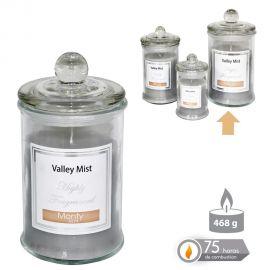 Parfumuri de camera, Idei cadouri, Obiecte decorative - Lumanare parfumata GLASS JAR CANDLE VALLEY MIST gri