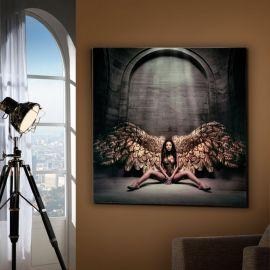 Tablou decorativ Angel caido